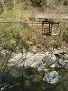 20060515mon_nijyu_kazura2