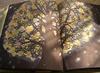 20060525thu_book