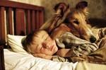 20061025wed_lassie