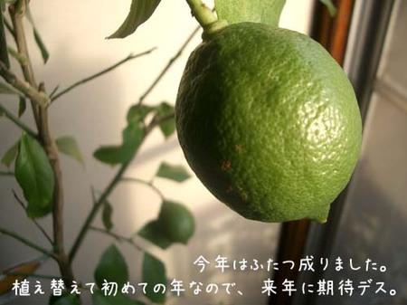 20070915sat_lemmon_2