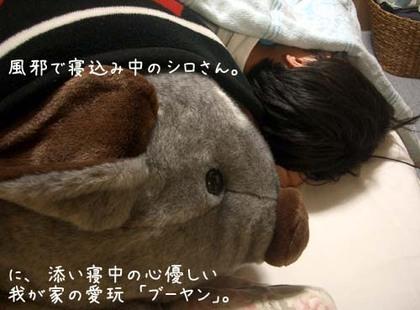 20071008mon_booyan