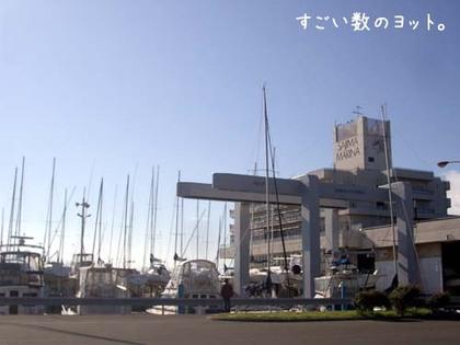 20071113_sajima1