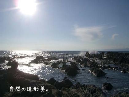 20071113_sajima8