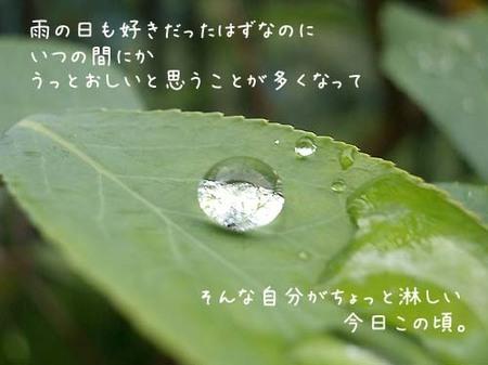 20070530wed_rain