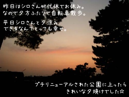 20070612tue_jitensyasanpo