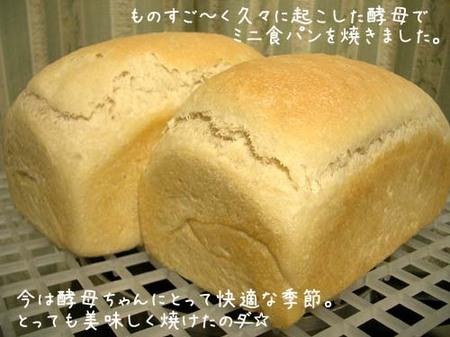 20070613wed_koubosyokupan