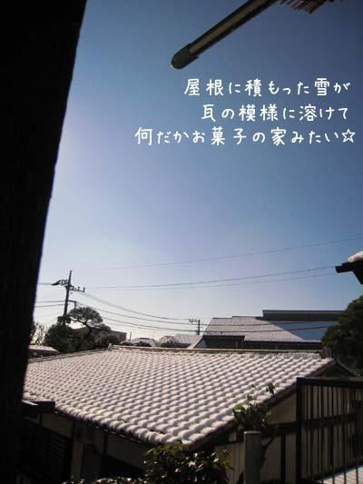 2000204mon_yane