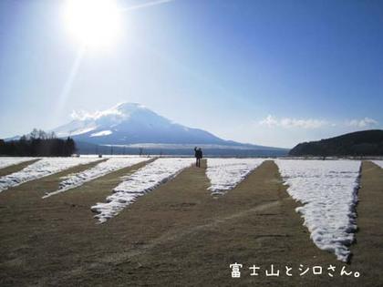 2000307_hujishirosan