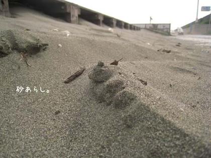 20080522thu_wind5
