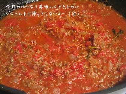 20080523fri_tomato