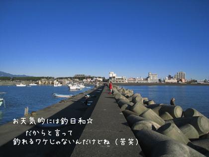 20090211wed_sea3