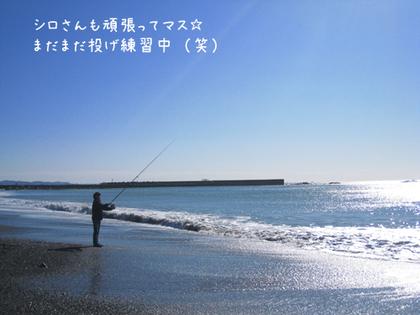 20090211wed_sea5