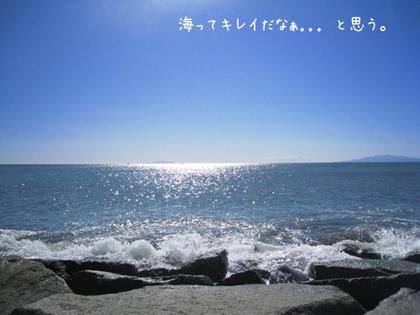 20090211wed_sea6